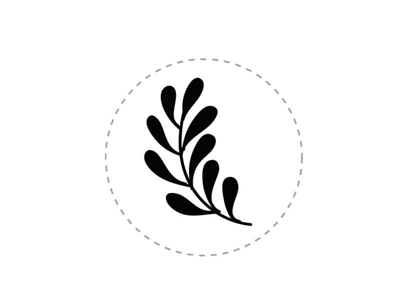 sellos de lacre personalizados rama